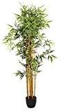 Plante artificielle Bambou Pot, Hauteur 180 cm -PEGANE-