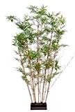 plante artificielle, semi-naturelle Bambou oriental haie 150cm - taille : 150cm