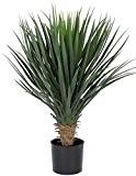 Plante Artificielle–Yucca Rostrata Premium 2M 20,3cm haute