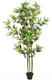 Revimport 04/0776 Bambou Artificiel 180 Plastique Vert 80 x 80 x 180 cm