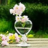 SHINA Coeur créatif en verre clair de type tableau vase decoration artisanat pour la maison ou le mariage ou la ...