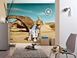 Star Wars - Papier peint Lost Droids 368 x 254 cm