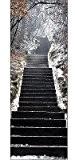 Stickersnews - Papier peint pour porte trompe l oeil Escalier neige réf 617 Dimensions - 83x204cm