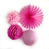SUNBEAUTY Série Rose Pompons Papier de Soie Lanterne et Boule Alveole pour Decoration Mariage Anniversaire Pâque Baptême (Rose)