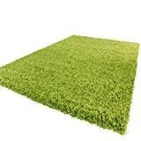 Tapis Shaggy Longues Mèches En Vert Tapis Shaggy Longues Mèches En Vert, Dimension:Ø 160 cm Rond