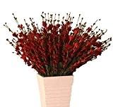TININNA 20pcs Bouquet de Fleurs Artificielles Jasmin d'hiver Mousse Decoration PE de Mariage Mariee Rouge