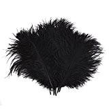 7b842222861ca TININNA Naturel Plume Décoration - Idéal Pour Costumes