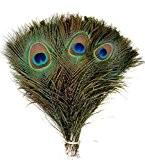 TININNA Naturelles Plumes de Paon Artificielles Décoration Pour Création Artisanale Artistique Décoration Nuptiale Chapeaux Coiffure 50 PCS