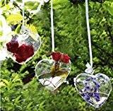 Vase Coeur Suspendu en Verre Transparent pour Plantes Fleurs Décoration de Jardin Maison