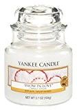 Yankee Candle 1249717E Bougie Parfumée L'Amour d'Hiver Blanc