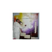 site artiste atelier - thierry pimort (Pim)