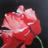Painting - coquelicot 2