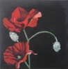 Painting - coquelicot 3