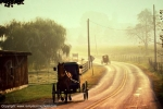 Photo - Amish - Pennsylvanie
