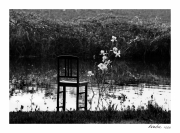 photo paysages chaise eau : Perception 001