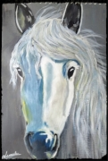 tableau animaux blanc cheval camargues gris : CHEVAL BLANNC