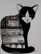 tableau animaux chat chats paysage animaux : Chat noire
