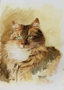 tableau animaux chat : Chatte