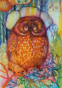 tableau animaux chouette hibou owl animaux : Chapka