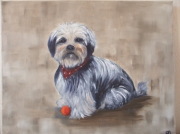 tableau animaux ness chien balle : Ness