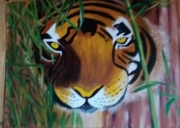 tableau animaux tigre jungle : tigre