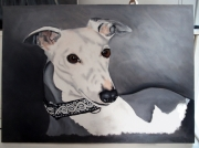 tableau animaux whippet chien levrier fidelite : Cookie
