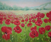 tableau paysages coquelicot : coquelicot