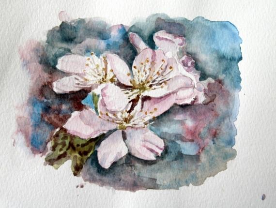 Tableau Peinture Fleur Cerisier Japon Cerisier Du Japon