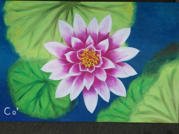 Tableau Peinture Lotus Fleur Yoga Epanouissement Vue Du Ciel