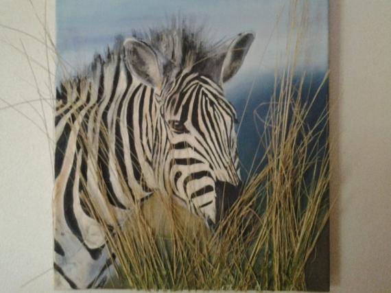 Tableau Peinture Tableau Peinture Huile Acrylique Le Zebre